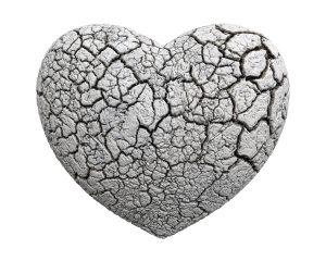 heart-1463424_960_720-pani-nikt